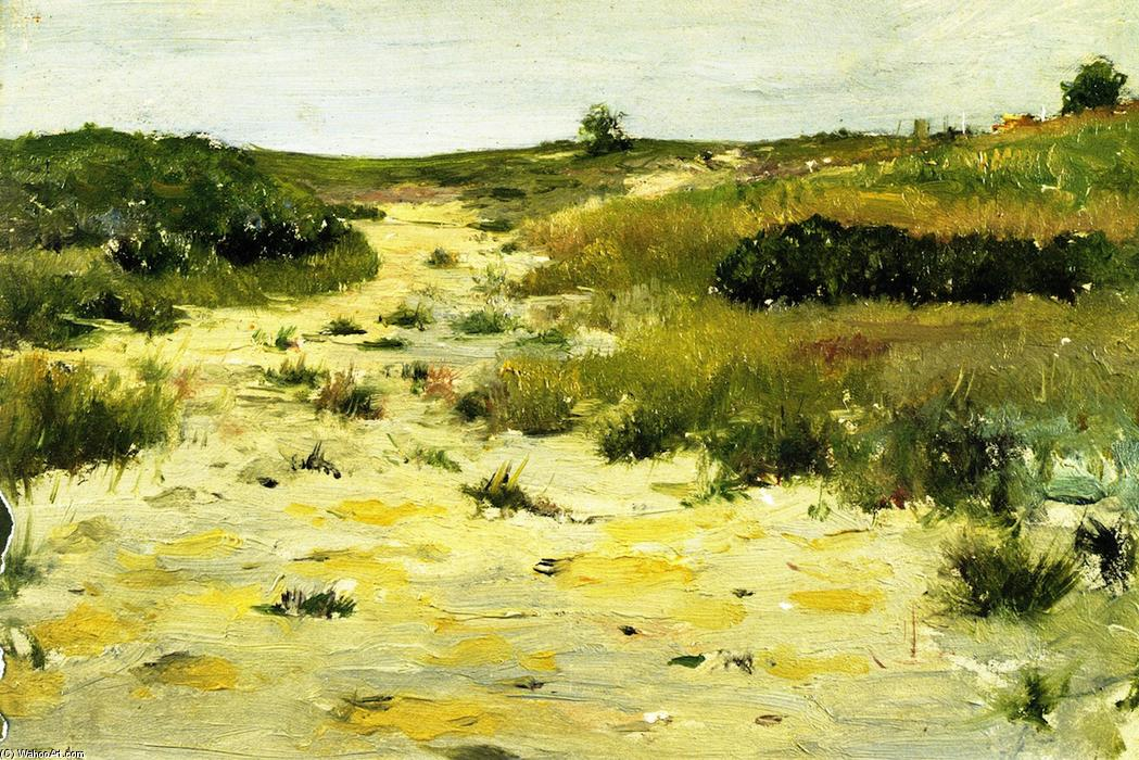 famous painting Shinnecock Hills (8) of William Merritt Chase